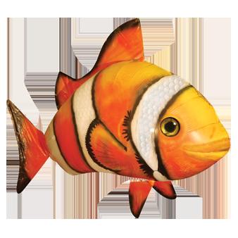 letajici_ryba_nemo